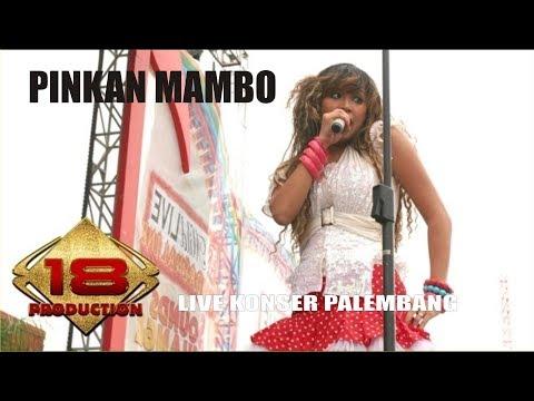 PINKAN MAMBO - KASMARAN | AWASSS BAPERR  (LIVE KONSER PALEMBANG 2007)
