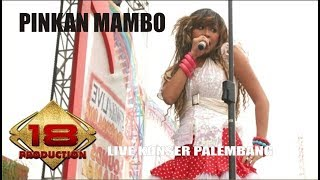 Gambar cover PINKAN MAMBO - KASMARAN | AWASSS BAPERR  (LIVE KONSER PALEMBANG 2007)