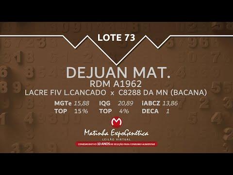 LOTE 73 MATINHA EXPOGENÉTICA 2021