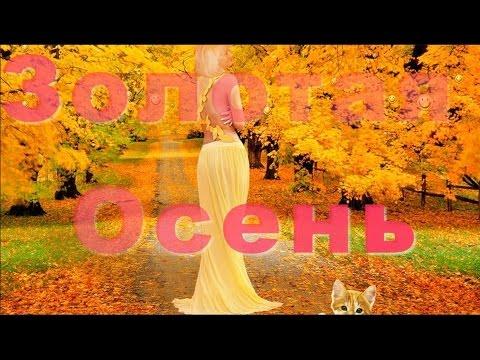 Позитив Друзьям Золотая Осень gold autumn Яркие краски осени Красивые видео открытки поздравления