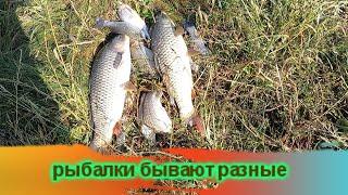Сома не поймал но такую видел поклёвку Рыбалки бывают разные но в этом их и прелесть