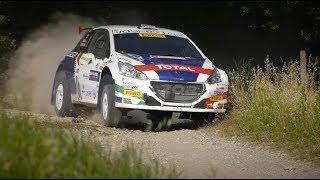 San Marino Rally 2018 - Peugeot 208 T16 e Paolo Andreucci - Shakedown