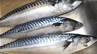 Как  дома засолить сельдь, скумбрию, красную рыбу(Как засолить рыбу в домашних условиях. В зависимости от жирности рыбного продукта (кеты, скумбрии), вкусовых..., 2015-08-26T14:08:42.000Z)