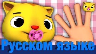 Семья пальчиков | коты | детские песенки | Литл Бэйби Бум