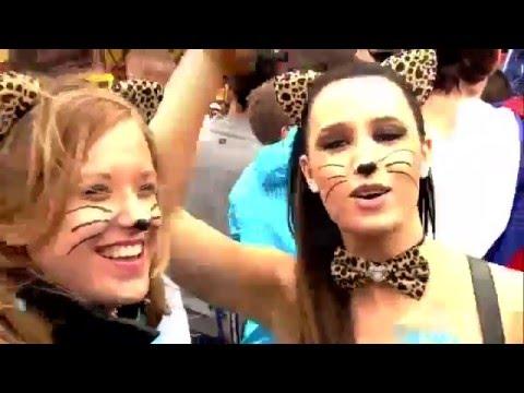 Tomorrowland 2017 - David Guetta Full HD