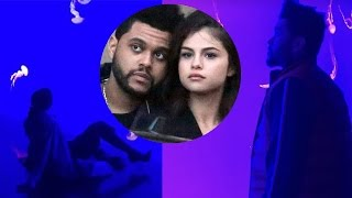 Selena Gomez and the Weeknd's SUPER Romantic Aquarium Date! 😍