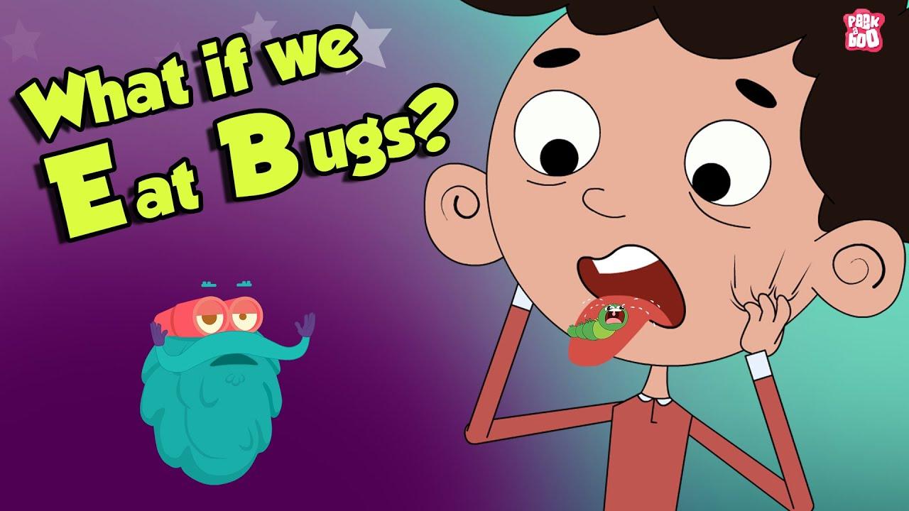 Download What If We Eat Bugs? | EATING BUGS | Dr Binocs Show | Peekaboo Kidz