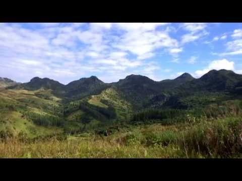 FIJI Water and Conservation International team up to reforest Fiji