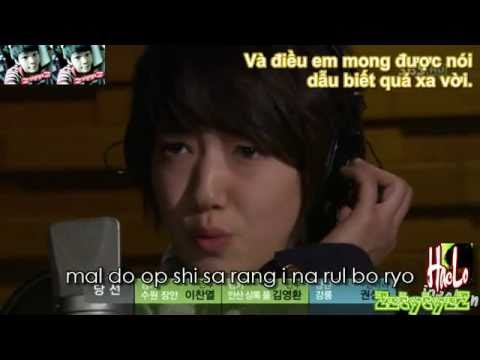 Without Words - Park Shin Hye - Vietnamese Lyrics - ZztytyzZ