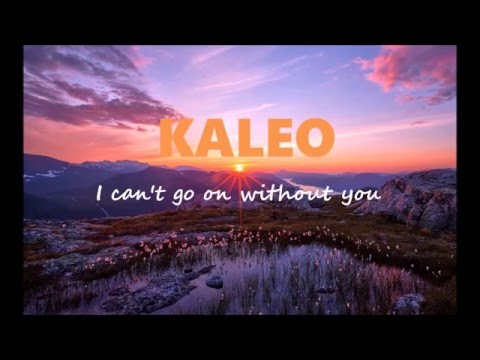 Kaleo - I can't go on without you   / Letra