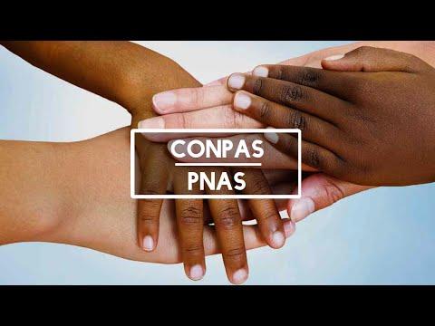 Psicologia, organização política das (os) trabalhadores e a consolidação da PNAS