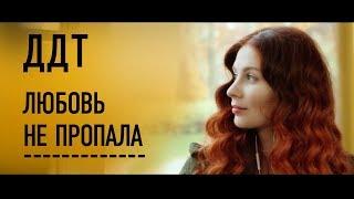 Download ДДТ — Любовь не пропала [Official Video] Mp3 and Videos