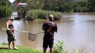 ASFN Bank Angling - Demalachite Vaal River