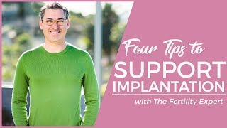 How to support embryo implantation to get pregnant (4 tips) - Marc Sklar The Fertility Expert