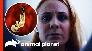 Woman Finds Weird Creatures In Her Urine | Monsters Inside Me