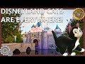 Disneyland Cats Are EVERYWHERE!