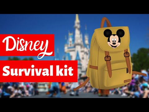 Disney Park Bag Essentials + Printable Checklist: What You Need For Disney World And Disneyland