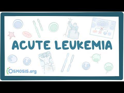 Acute Myeloid & Lymphoblastic Leukemia - Causes, Symptoms & Pathology