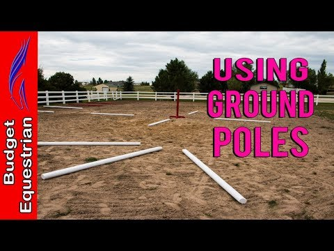 Using Ground Poles Day 17 Being A Better Rider Challenge