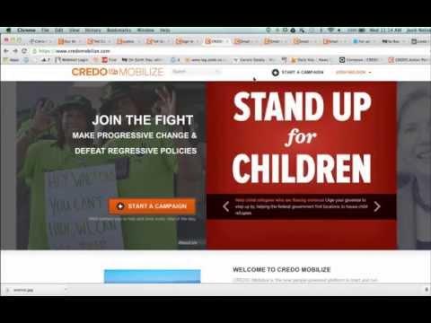 NCSE activist webinar: Petitions!
