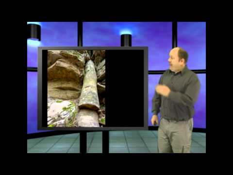Geological Column Busted, this is Genesis Week, episode 30 season 2 with Wazooloo/Ian Juby