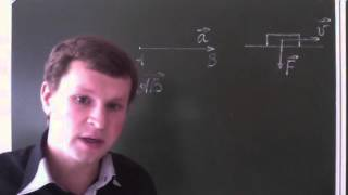 Понятие вектора. Равенство векторов.