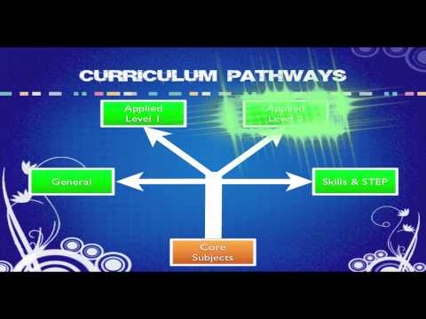 Pathways and Option Choices 2011