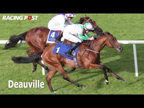 Investec Derby 2016: Coolmore runners