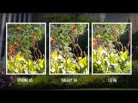 Camera shootout: iPhone 6S vs. Galaxy S6 vs. LG G4