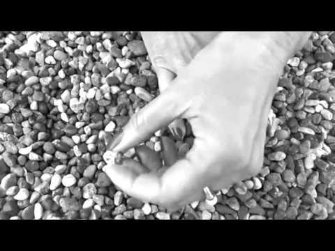 Ανδριάνα Μπάμπαλη Τα Δαχτυλίδια