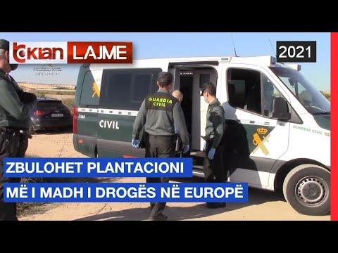 Download Tv Klan - Zbulohet plantacioni më i madh i drogës në Europë | Lajme-News