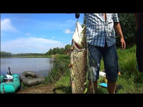 как вырезать кружки для рыбалки