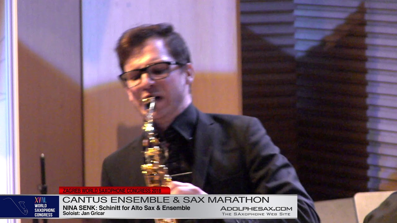 Schinitt by Nina Senk Sol: Jan Gricar   Cantus Ensemble & Sax Marathon  XVIII World Sax Congress 201