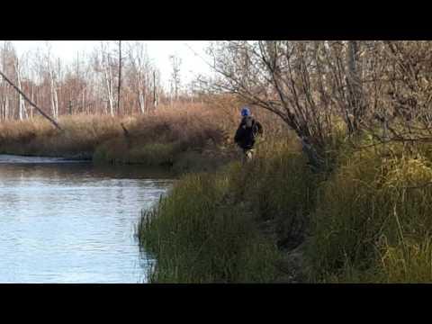 рыбалка осень сургут