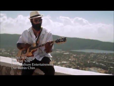 STUART WILSON - FEEL FOR YOU [Love Culture Entertainment]