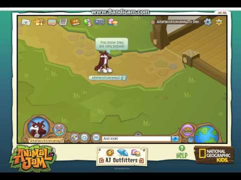Animal Jam:That's all what's left from old me XC