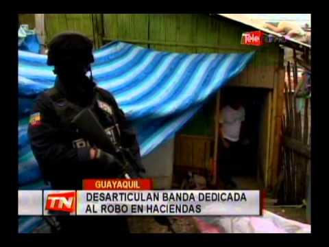 Desarticulan banda dedicada al robo en haciendas