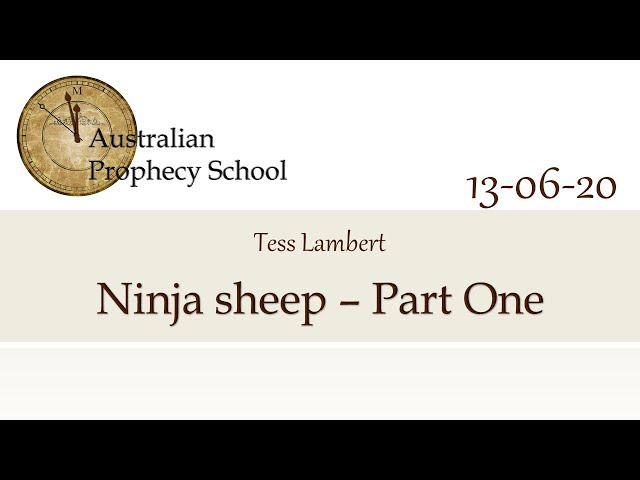Ninja Sheep - Part One; Tess Lambert - 13.06.2020