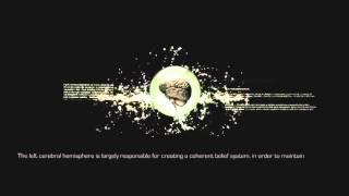 Неврология  Квантовая механика  Квантовая физика  Теория всего
