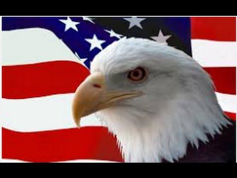 7 Nguyên tắc sống của đại bàng – biểu tượng của nước Mỹ