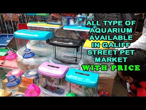 ALL TYPE OF AQUARIUM AVAILABLE IN GALIFF STREET PET MARKET WITH PRICE