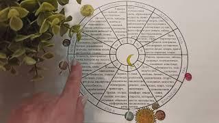 ВОДОЛЕЙ гороскоп май 2021