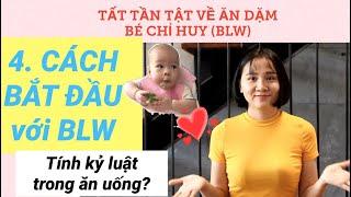 Tất tần tật ăn dặm bé tự chỉ huy BLW #4 CÁCH BẮT ĐẦU ĂN DẶM BLW, Tính kỷ luật trong ăn uống