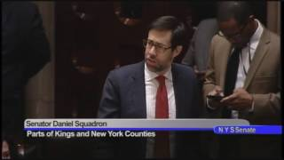 Senator Squadron comments on S.2003D