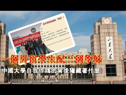 张杰:一个男留学生配三个学妹 中国大学自我作贱的背后隐藏着什么?