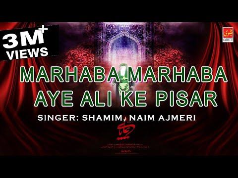 Marhaba Marhaba Aye Ali Ke Pisar | Asgar Ka Jhula | Shamim, Naim Ajmeri | Shahadat 2016