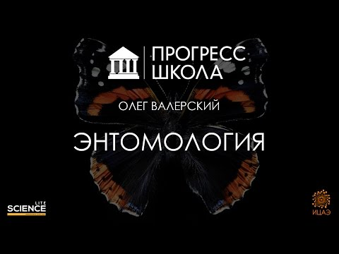 Олег Валерский — Энтомология
