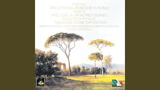 Pini di Roma: IV. I pini della Via Appia