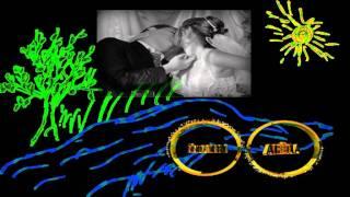 заставка к свадебному фильму, подложка на ДВД меню