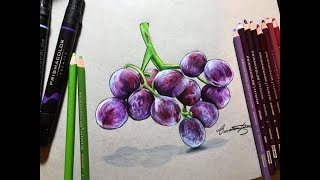 Drawing Realistic Purple Grapes Using Prismacolor
